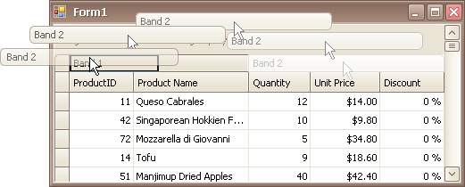 EU_XtraGrid_GridView_DragBands